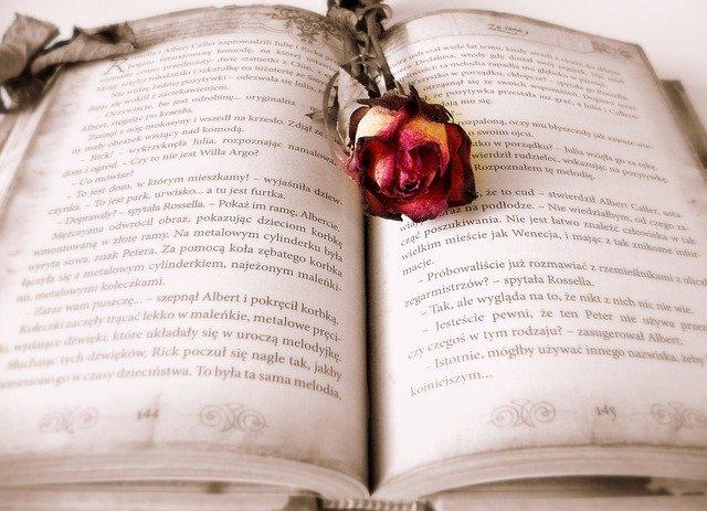 Rekomendasi Buku Pengembangan Diri Terbaik Untuk Anda Baca