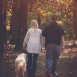 7 Tips Menjalani Kehidupan Rumah Tangga Bahagia